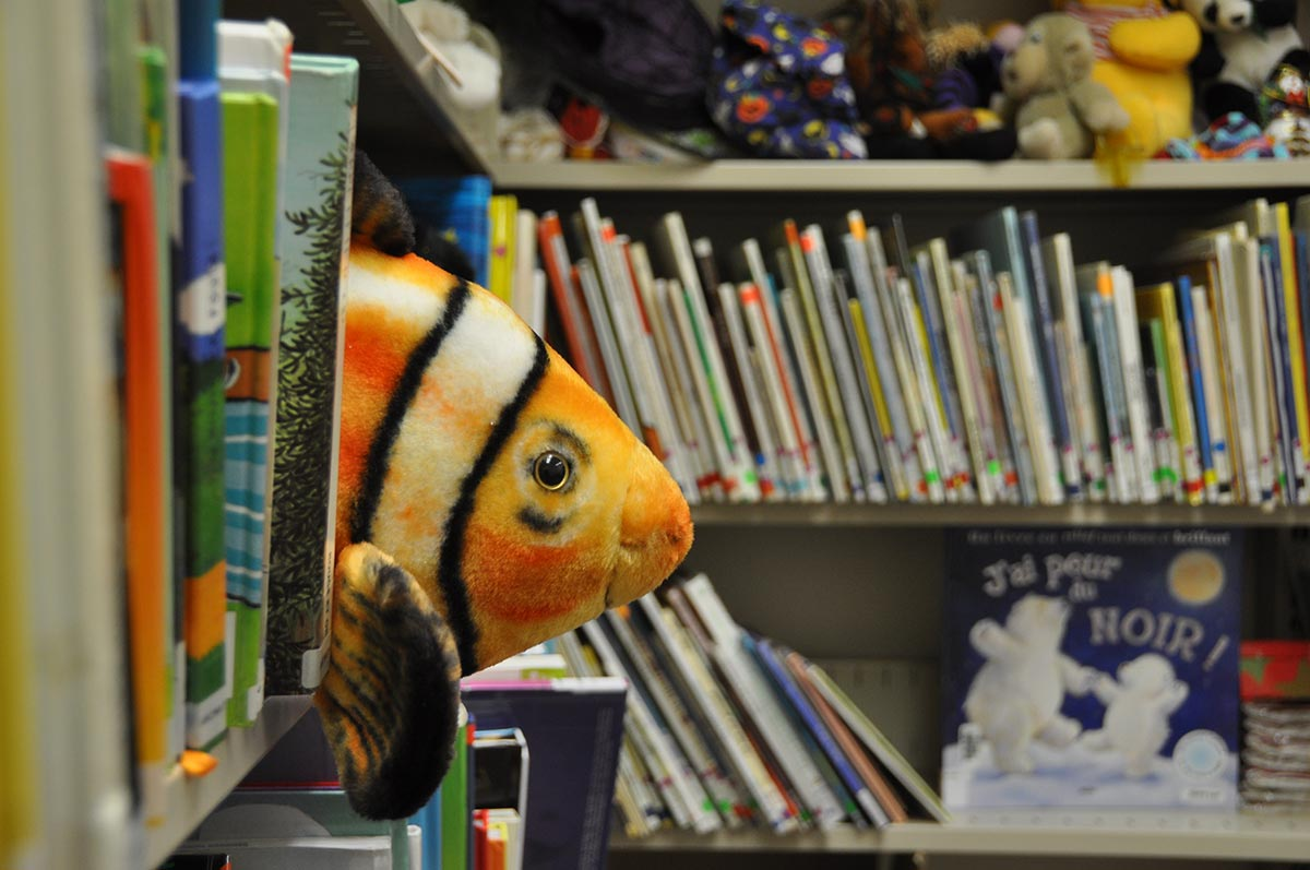 Un étagère de livres à la bibliothèque.