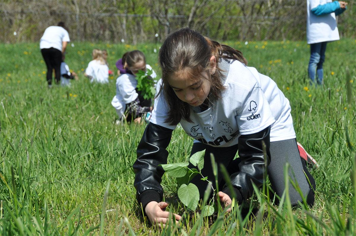 Une jeune fille plantant un arbre.